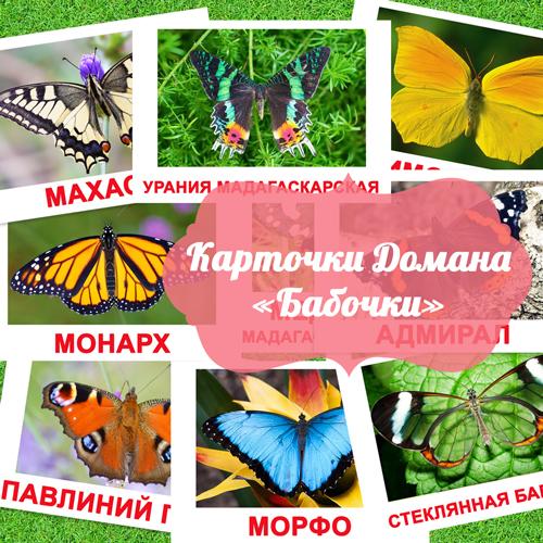 бабочки картинки с названием, картинки бабочек для детей