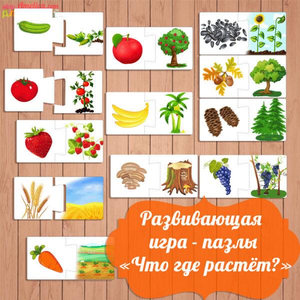 развивающая игра пазлы, игра что где растёт скачать, изучаем мир растений