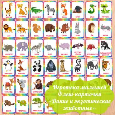 карточки дикие животные, карточки для малышей, картинки животных для детей,
