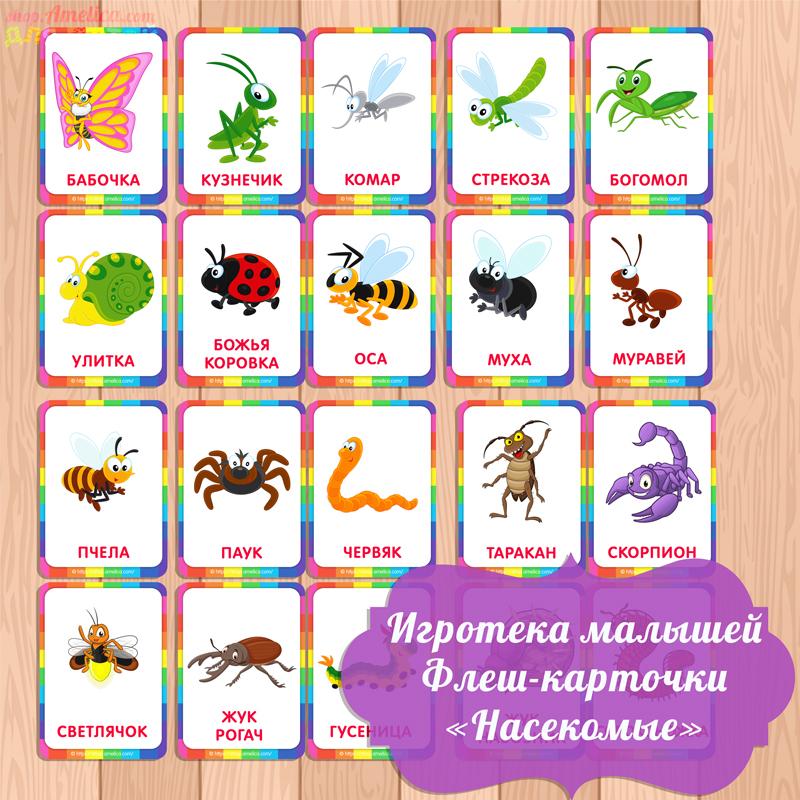 карточки насекомые, карточки для малышей, картинки насекомых для детей