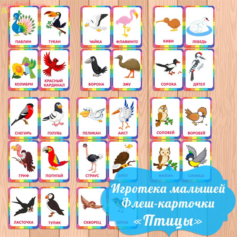 карточки птицы, карточки для малышей, картинки птиц для детей, картинки птиц скачать