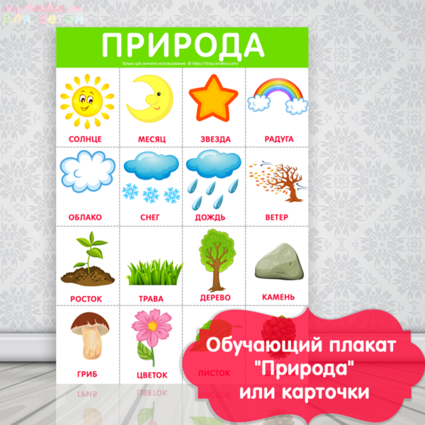 плакат природа для детей, окружающий мир картинки для детей