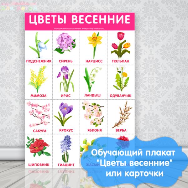 плакат для детского сада, картинки весенние цветы для детей, детские картинки цветы