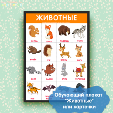 Обучающий плакат, развивающий плакат для детей, плакат для детского сада, картинки животные для детей,