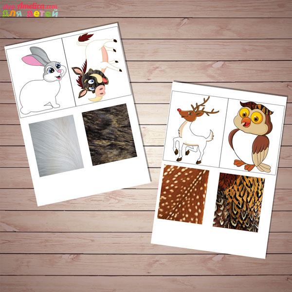 Дидактическая игра для детей, детская дидактическая игра, игра угадай чья шкурка, играживотныелеса для детей