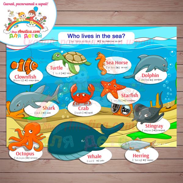 """Развивающее демонстрационное пособие """"SEA"""" - """"Морские обитатели на английском языке для детей!""""."""
