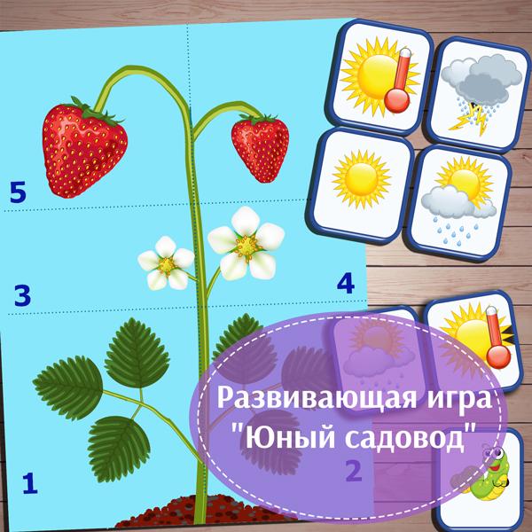 """Развивающая игра """"Юный садовод"""" скачать для печати"""
