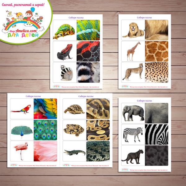 Дидактическая игра «Чья шкурка?» - Животные Африки