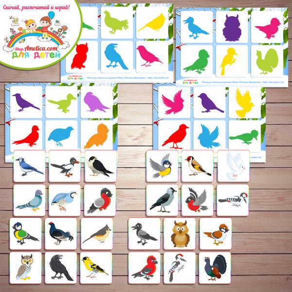 """Теневое лото """"Зимующие птицы"""" для детей шаблон скачать для печати"""