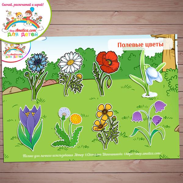 Игры на липучках! Дидактическая игра «Полевые цветы» скачать для распечатки
