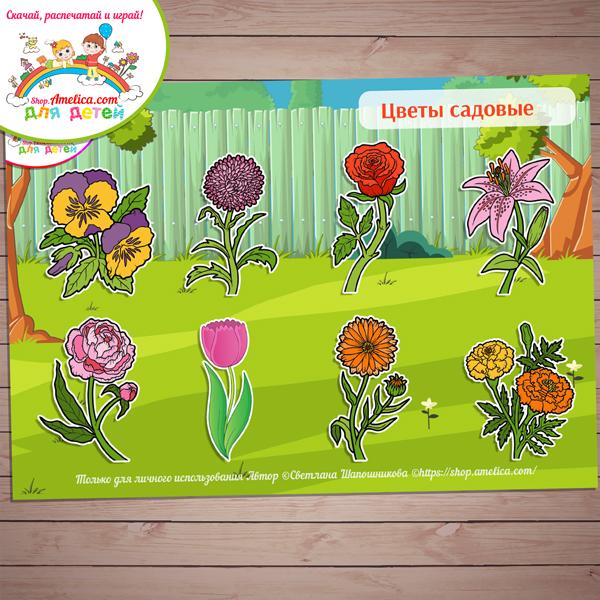 Игры на липучках! Дидактическая игра «Цветы садовые» скачать для распечатки