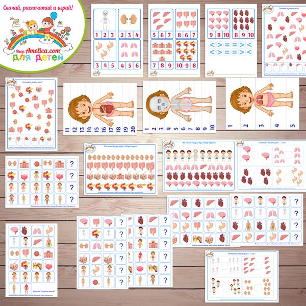 """Тематический комплект """"Тело человека. Часть 2. Внутреннее строение"""" игры и развивающий материал для детей скачать для печати"""