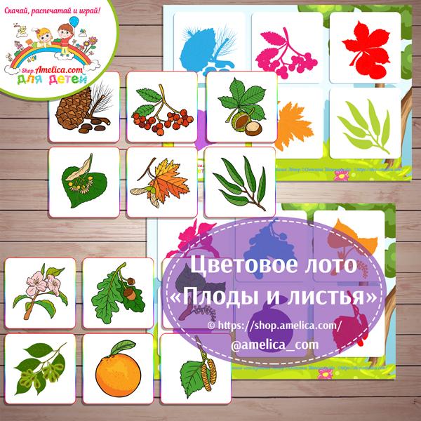 """Теневое лото """"Плоды и листья"""" для детей шаблон скачать для печати"""