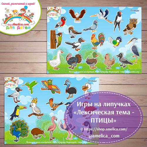 Дидактическая игра на липучках для детей «Лексическая тема - птицы»