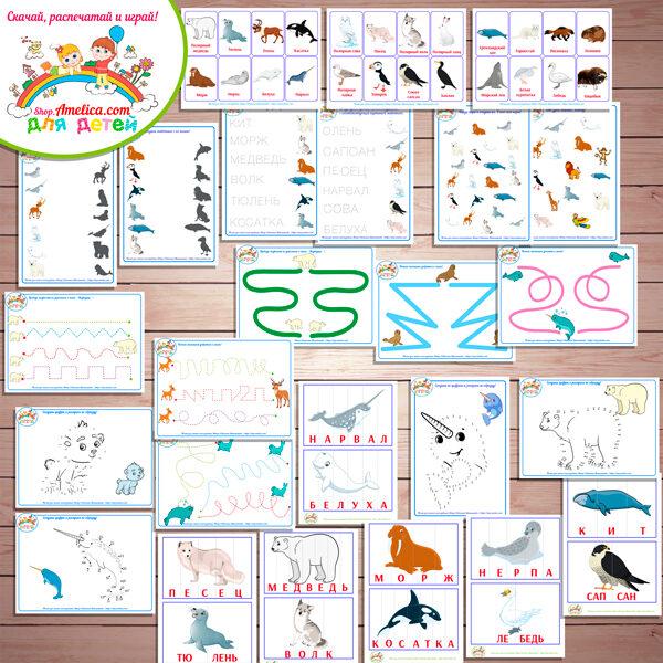 Тематический комплект животные Севера. Тематический комплект развивающего материала для детей «Кто живет на Севере?»
