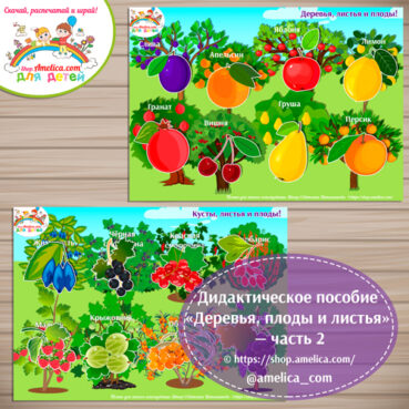 Дидактическое пособие «Деревья, плоды и листья» - часть 2