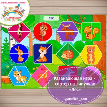 Дидактическая игра на липучках - сортер для дошкольников «Лес».
