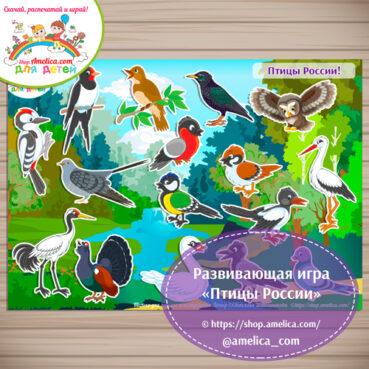 Дидактическая игра на липучках для дошкольников «Птицы России».