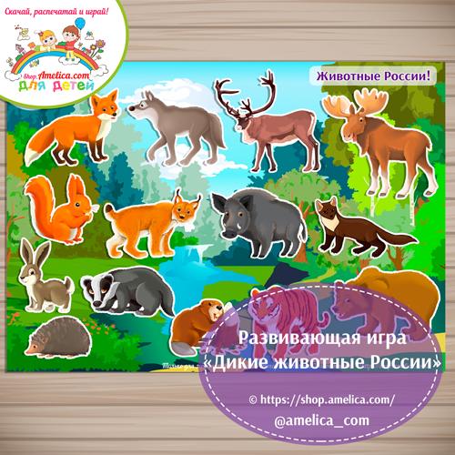 Дидактическая игра на липучках для дошкольников «Животные России».